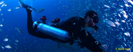 Open Water Sidemount Diver Specialty (OC Only)
